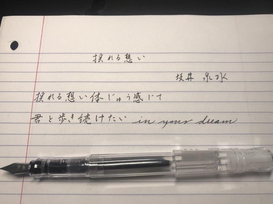Penmanship pen extra fine