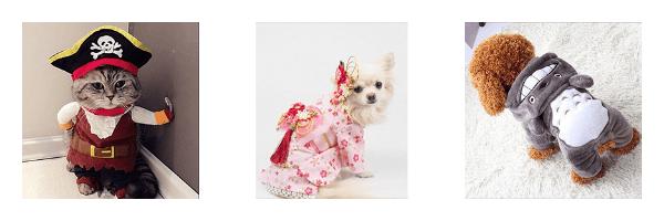 Buy Pet Clothes on ZenMarket