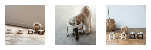 Buy pecolo Elevated Pet Bowls on ZenMarket