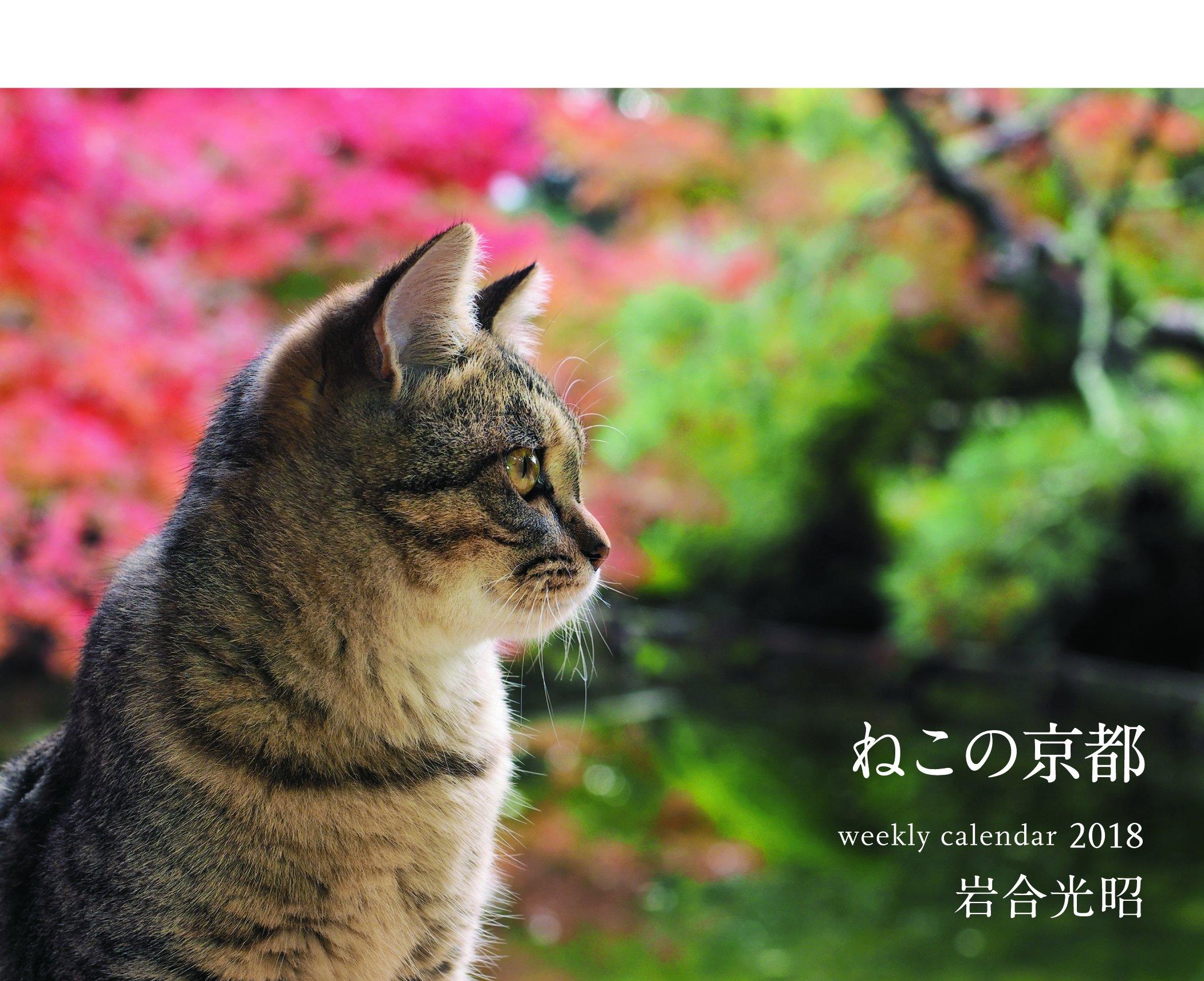 Iwago Mitsuaki cats calendar - Proxy Service - ZenMarket