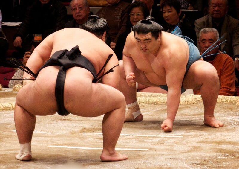 Honbasho or sumo tournament