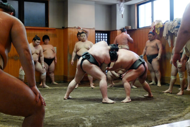 Sumos training at a stable or beya