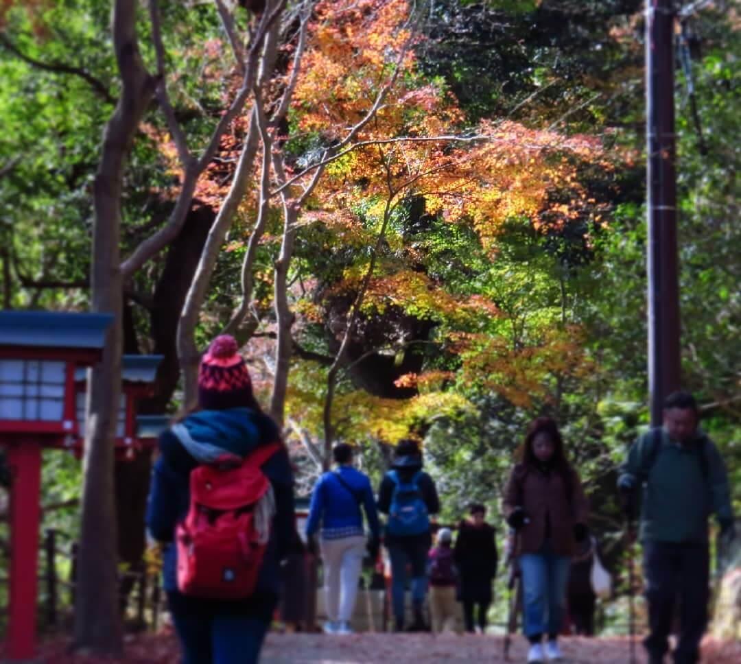 Mount Takao, Tokyo, in autumn