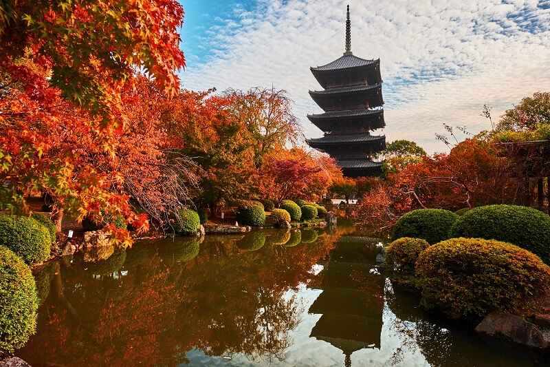 Kyoto Pagoda with Momiji